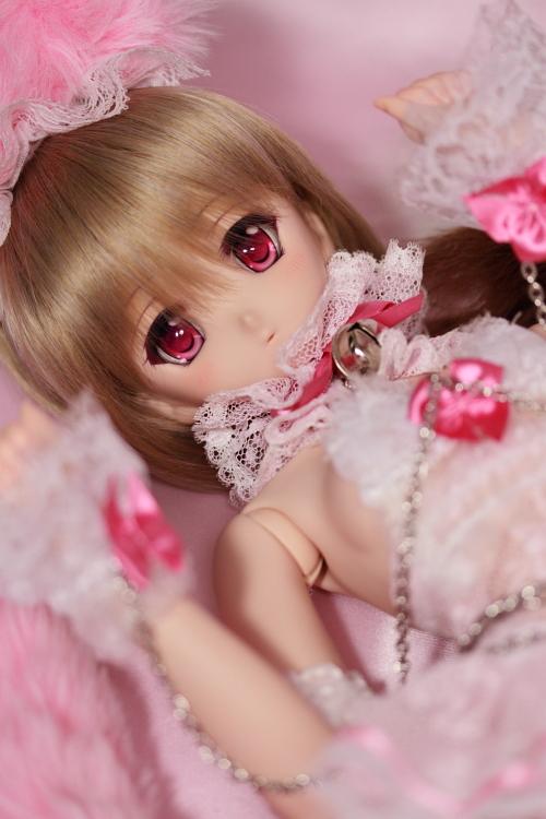 IMG_2586_sakunon.JPG