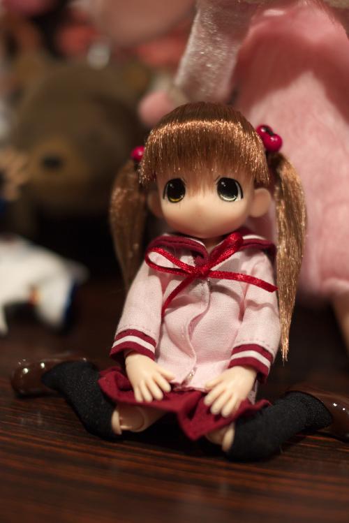P1070512_shinki_edited-1.jpg