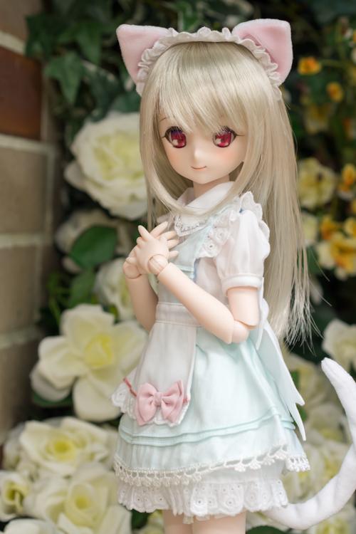 P4260955-sumika.jpg