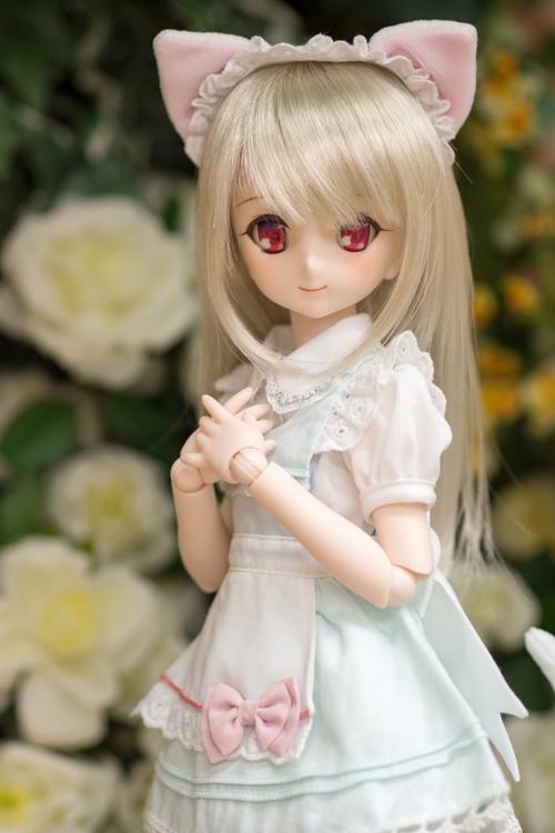 P4260956-sumika.jpg