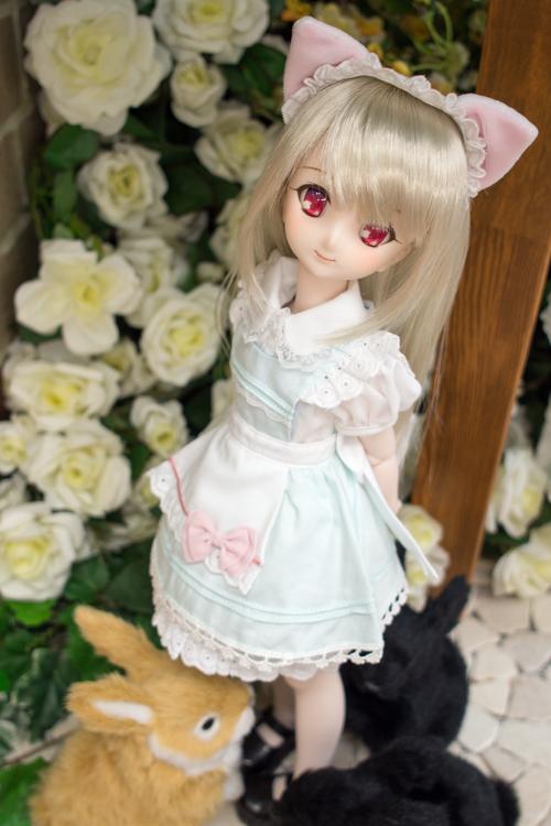 P4260967-sumika.jpg