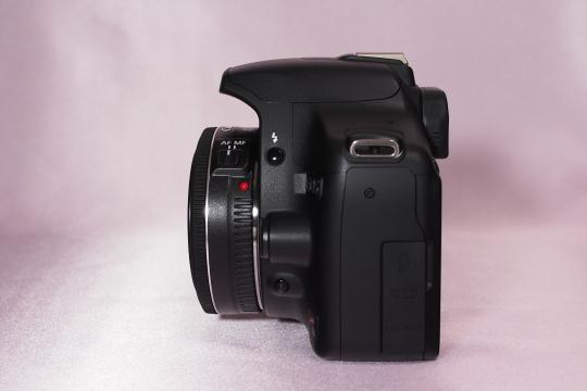 P6286322_ef40mm.jpg