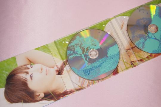 P7266738_cd.jpg