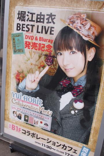 P9286262_yui.jpg