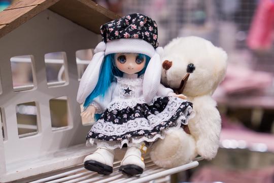 PC042647-idoll48.jpg