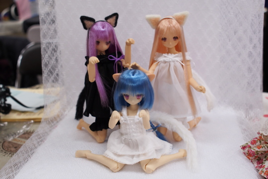PC087248_idoll39.jpg