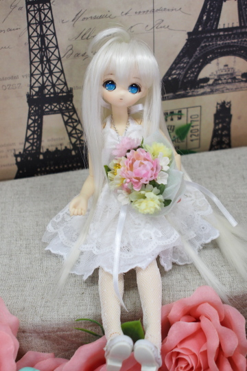 PC087255_idoll39.jpg